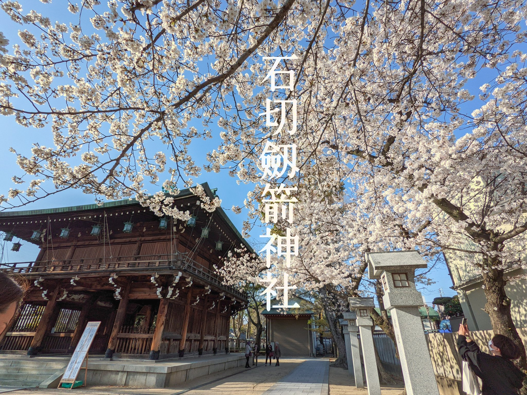 石切劔箭神社の桜(2021/03/26撮影)