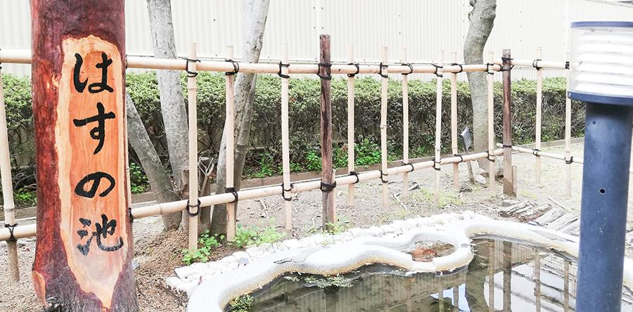 東大阪市リージョンセンター はすの広場 : はすの庭